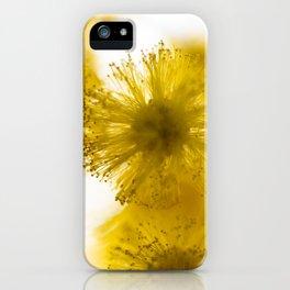 Acacia Flower IV iPhone Case