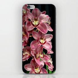 It's The Razzies! iPhone Skin