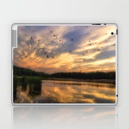 Coming in to Roost Laptop & iPad Skin