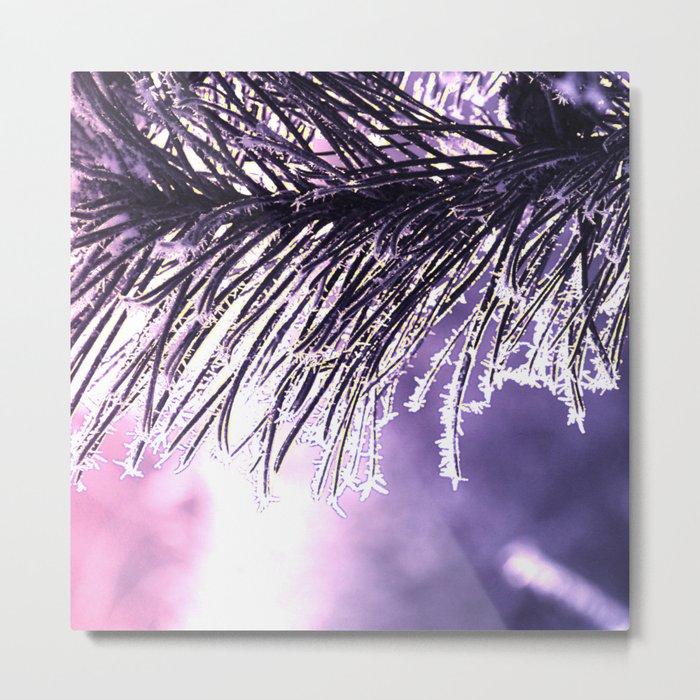 Pine(2) Metal Print