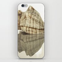 seashell iPhone & iPod Skins featuring Seashell by Patrik Lovrin Photography