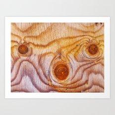 Wood fad Art Print