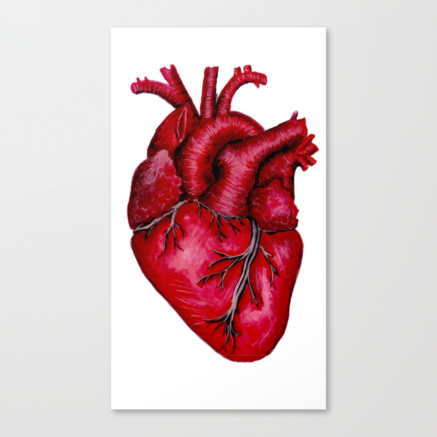 Anatomical Heart Painting Red Canvas Print By Lisska Society6