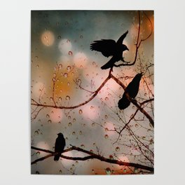 Rainy Day Crows Poster