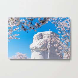 Dr. King in the Spring Metal Print