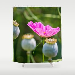 Pink Poppy and Buds Shower Curtain
