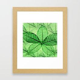 Foliage 2 Framed Art Print