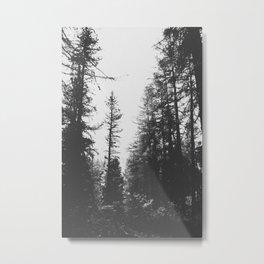 INTO THE WILD III / Switzerland Metal Print