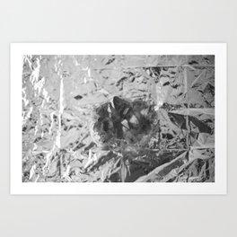 Crystal~ Art Print