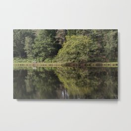 Summer Reflections - 1 Metal Print