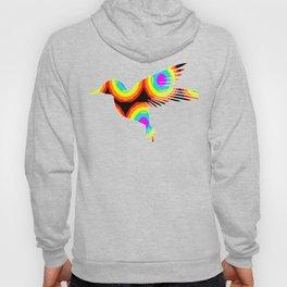 Hummingbird 429 Hoody