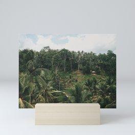 Bali Tegalalang Mini Art Print