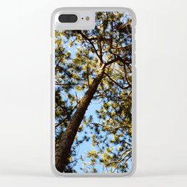 EVENING PINES Clear iPhone Case