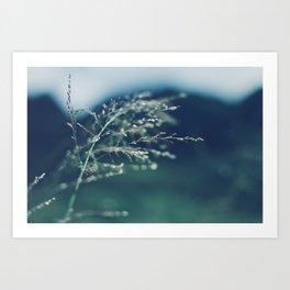 Hawaii Wind Art Print