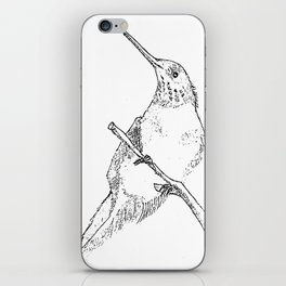 bird sketch iPhone Skin