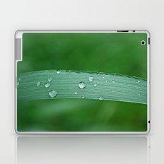 grass drop Laptop & iPad Skin