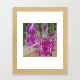 Pink catcus Framed Art Print