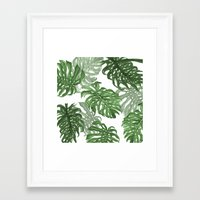 palms Framed Art Prints featuring Monstera Deliciosa by Laura O'Connor