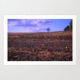 The Lonely Pumpkins Art Print