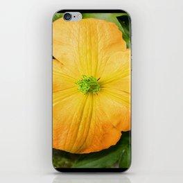 Spring Bloom iPhone Skin