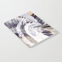 Lien Notebook
