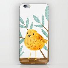 Yellow Warbler iPhone & iPod Skin