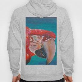 Scarlet macaw Hoody
