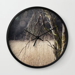 A big leafless tree in a swamp Wall Clock