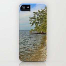 Gathering at the River II iPhone Case
