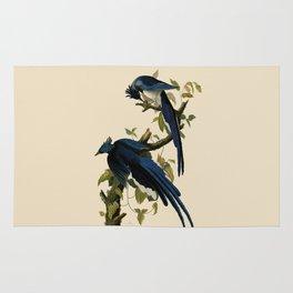 Columbia Jay Illustration by J.J. Audubon Rug