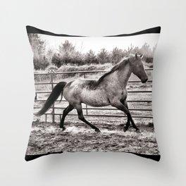 Miss Pepper the Rocky Mountain Horse  Throw Pillow