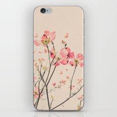 Vintage Spring Botanical, Peaches and Cream -- Pink Dogwood Flowers on Ivory Ground iPhone & iPod Skin