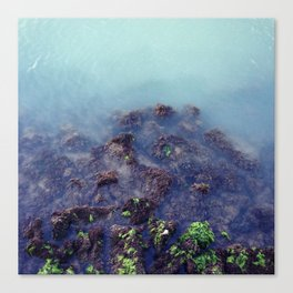 Soft Sea Canvas Print