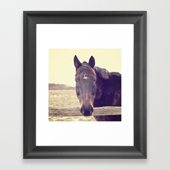 Hello Horse  Framed Art Print