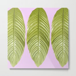 Three large green leaves on a pink background - vivid colors Metal Print