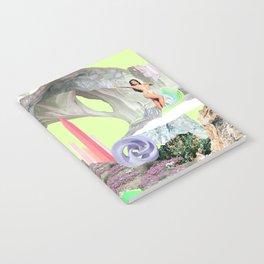 BI-BI Notebook