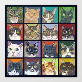 Cats, Cats, Cats with navy border Canvas Print