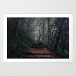 Appalachian Trail  Art Print