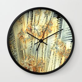 Vitamin C Sources for Happiness Wall Clock