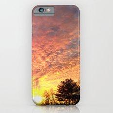 Red Winter iPhone 6s Slim Case