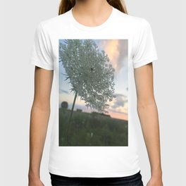 A Kingdom for a Flower. T-shirt