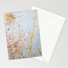 Intersection 4 Stationery Cards