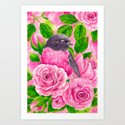 Pink Robin and roses by katerinamitkova