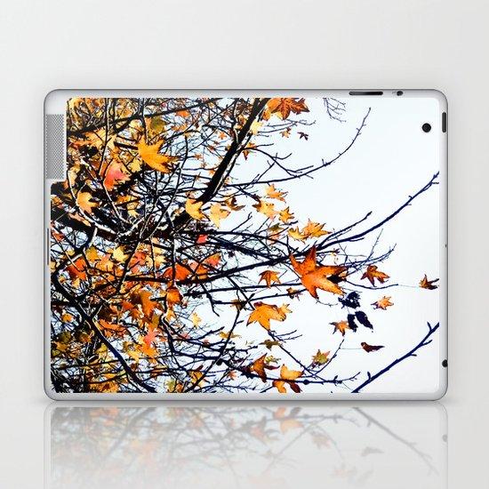 Fall Laptop & iPad Skin