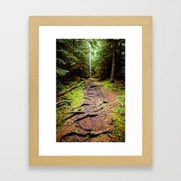path less traveled Framed Art Print