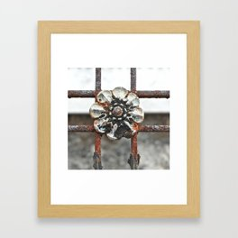 Rusted Rosette Ironwork Framed Art Print