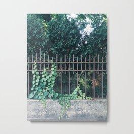 TAOU Metal Print