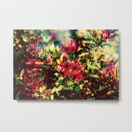Double Exposure - Hana Metal Print