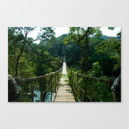 Jungle Bridge, Roatan, Honduras Canvas Print