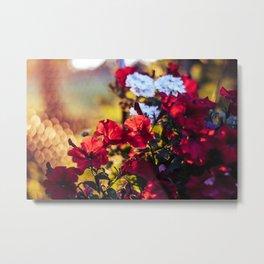 Flowery evening Metal Print